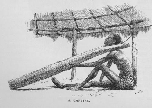 A captive
