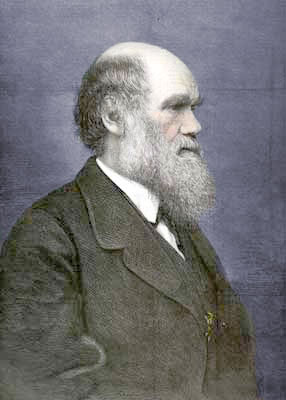 Charles Darwin. Darwin laid some of the first bricks in the imposing edifice of hard scientific facts which today supports the only ideologically coherent alternative to the intellectual spawn of the alien Judaeo-Christian phantasmagoria.