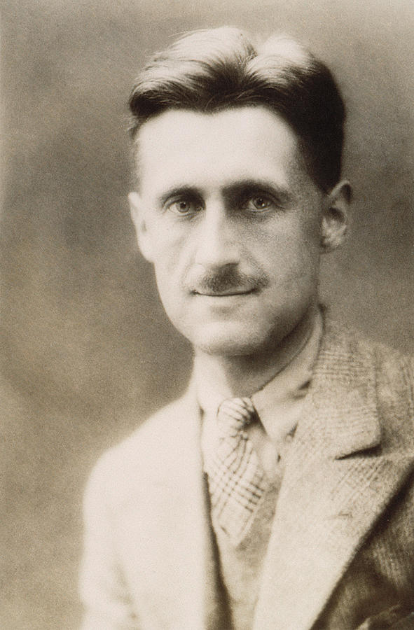 Writing an essay about George Orwell and political views he expresses?