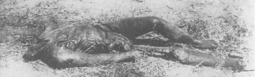 Decapitated corpse with severed leg was discovered in the yard of the KGB in Kherson. The body had been badly burnt.