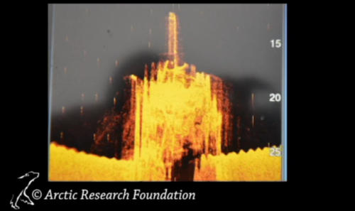 A side scan sonar image from an Arctic Research Foundation skiff, taken on Sept. 3, shows the discovery.