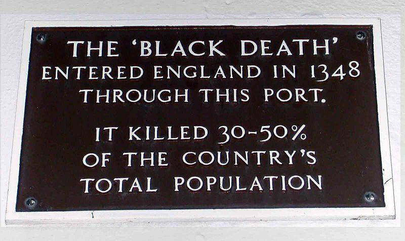 Essays on the black death