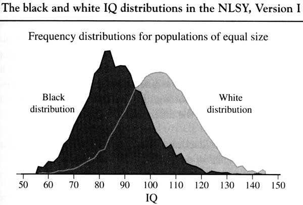 https://nationalvanguard.org/wp-content/uploads/2015/05/20060122_Multiracialists_are_Crazy_Part_3_IQ_graph_racial.jpg