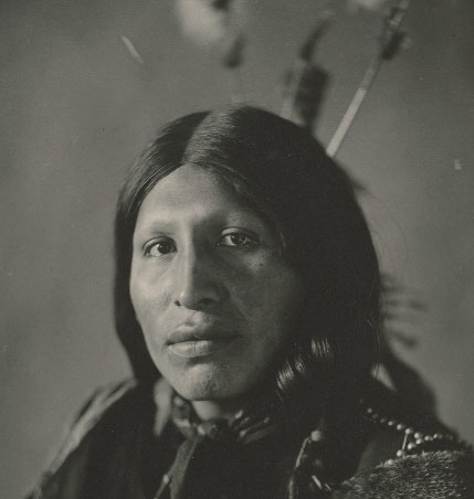 i left my heart at wounded knee book