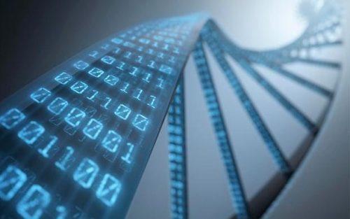 sophia-genetics_3513294b-large_trans++pJliwavx4coWFCaEkEsb3kvxIt-lGGWCWqwLa_RXJU8