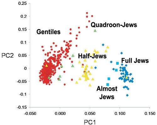 difference between sephardic and ashkenazi judaism essay New developments in judaism often transcend differences in religious practice between ashkenazi and sephardic  between ashkenazi jews and  sephardic judaism.