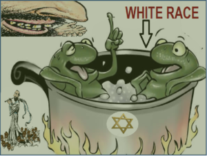 WhiteFrog.png