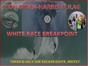 WhiteRaceBreakPoint.jpg
