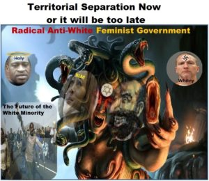 AntiWhiteFeminism.jpg